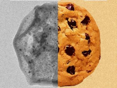 Nanocookies