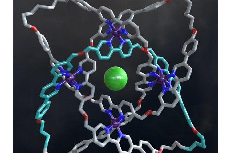 molecular_knot